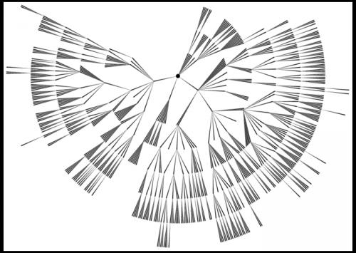 Антон Кузнецов: семинар «Принципы отношений на основе знаний и технологий науки ТантраДжйотиш»